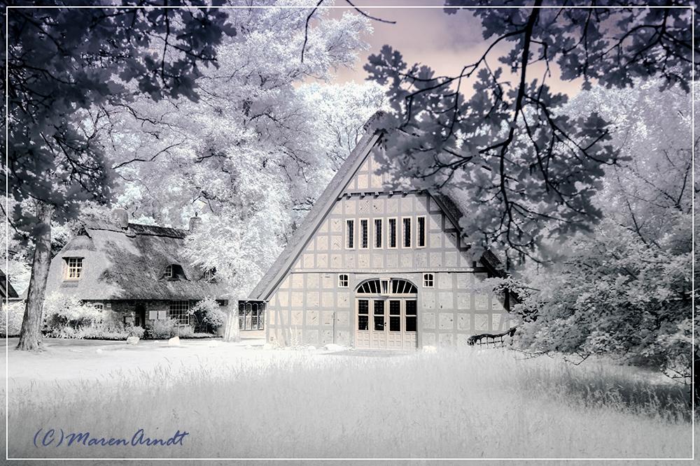 Fotogalerie Teufelsmoor